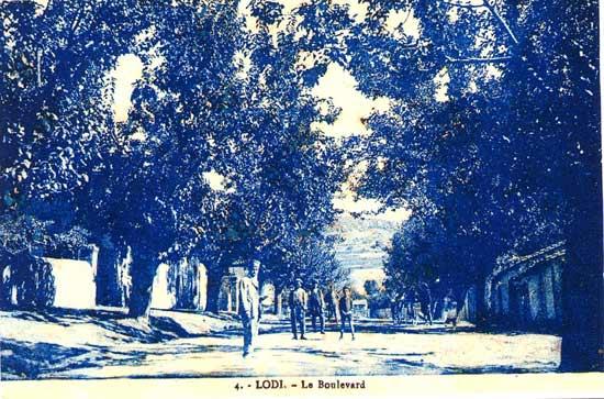 MEDEA-Lodi